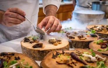 appetizers-chef-cuisine-1267320